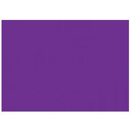 3_mps logo